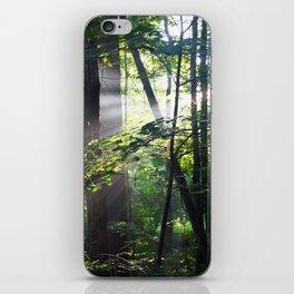 Cabin Light iPhone Skin
