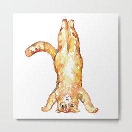 Yoga cat pose Painting Wall Poster Watercolor Metal Print