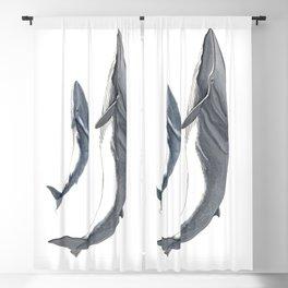Fin whale Blackout Curtain