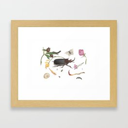 Common place miracles Part iii -Natural History Part Framed Art Print