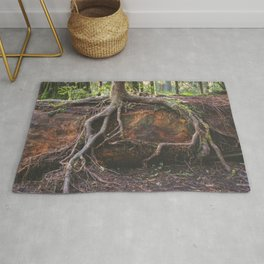 Jedediah Smith State Park - Forest Tree Rug
