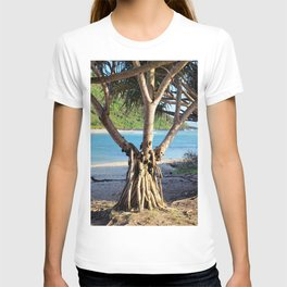 Looking through the Pandanus T-shirt