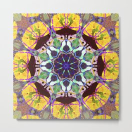 Concentric Lines of Color Metal Print