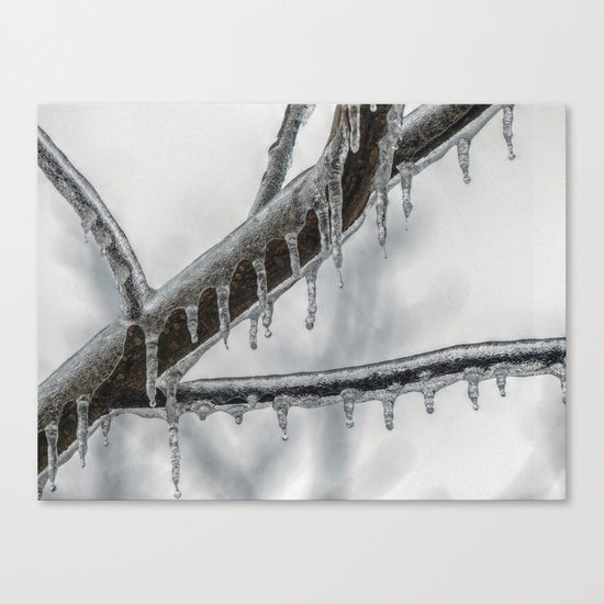 Icy Branch Canvas Print