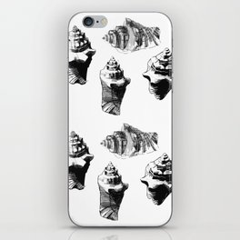 Conch Shell iPhone Skin