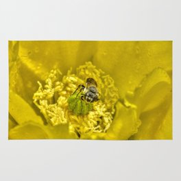 Rainy Day Cactus Flower Bee Rug