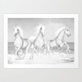 White Horses of the Camargue Art Print