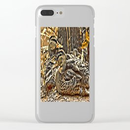 Laying Mallards Clear iPhone Case