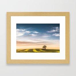 Alone in the Light Framed Art Print