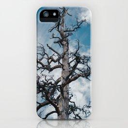 Gnarled iPhone Case