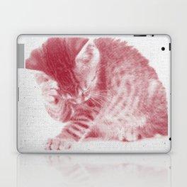 Kitten 01 Laptop & iPad Skin