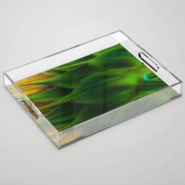 Sunny Back Acrylic Tray