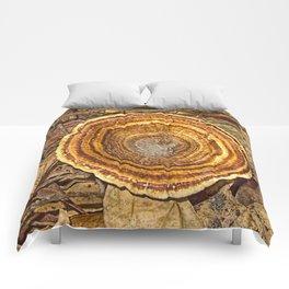 Bracket Fungi on the forest floor Comforters