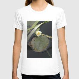 Zen Water Lily T-shirt