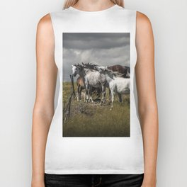 Western Horses by the Pasture Fence under a Cloudy Sky in Montana Biker Tank