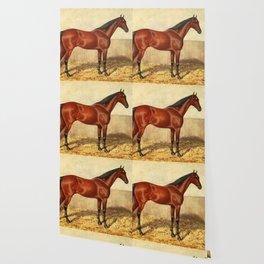 Vintage Stabled Horse Illustration (1905) Wallpaper