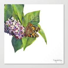 Butterfly & Lilacs Canvas Print