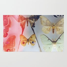 The Butterfly Collection Rug