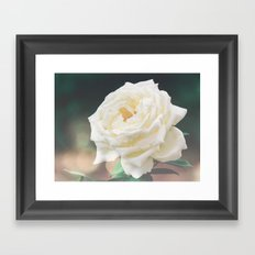 pleasant white Framed Art Print