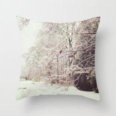 Ice Storm Throw Pillow