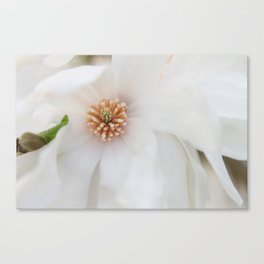 Centered Canvas Print