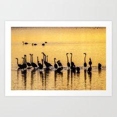 Silhouette of Pink Flamingos Art Print