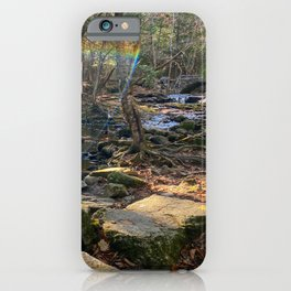 Vaughan Woods Foliage (4) iPhone Case