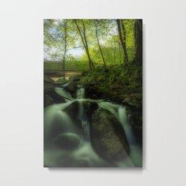 Summer forest treasure Metal Print