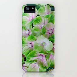 beautiful hydrangea floral background in green and pink colors iPhone Case