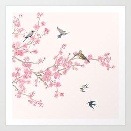 Birds and cherry blossoms Art Print