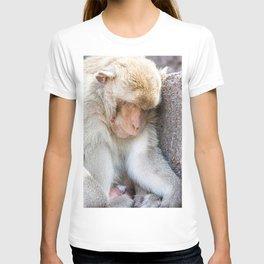 Monkeys of Thailand T-shirt