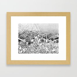 Transitions in nature part 1 Framed Art Print