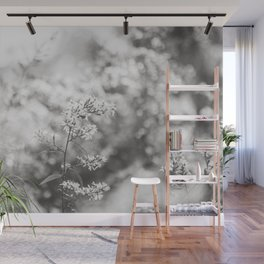Aster - Flower Photography Wall Mural