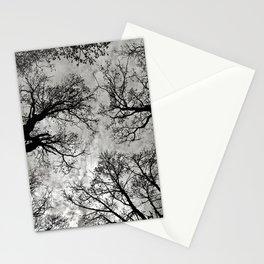 Meditative Power of Trees Stationery Cards