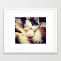 harley Framed Art Prints featuring Harley by Queenmissy