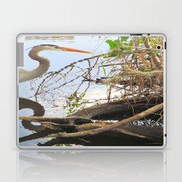 Bird Reflections Laptop & iPad Skin