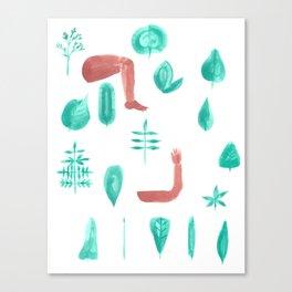 Leaf shape limb chart Canvas Print