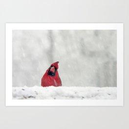 blizzard bird Art Print