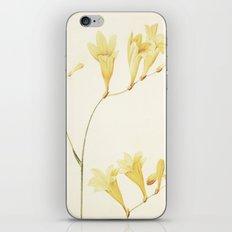 IV. Vintage Flowers Botanical Print by Pierre-Joseph Redouté - Sisyrinchium Collinum iPhone & iPod Skin