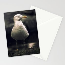 Seagull. The boss of the pond. Stationery Cards
