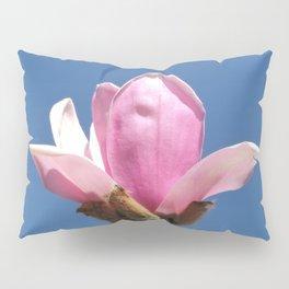 Magnolia Blossom on a Sky Blue Field Pillow Sham