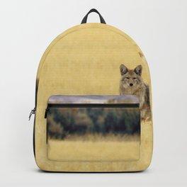 Canidae Backpack