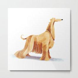 Afghan hound Metal Print