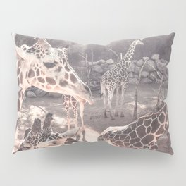 Giraffes // Spotted Long Neck Graceful Creatures in Wildlife Preserve Pillow Sham