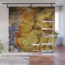 Earth Art Canyon Colors Wall Mural