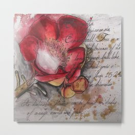 Cannonball Flower Metal Print