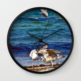 Seagulls screaming Wall Clock