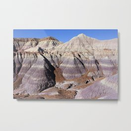 Purple Painted Desert :: Petrified Forest Metal Print