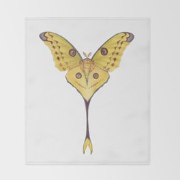 Comet moth (Argema mittrei) Throw Blanket