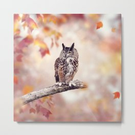 Great Horned Owl perched in the autumn woods Metal Print